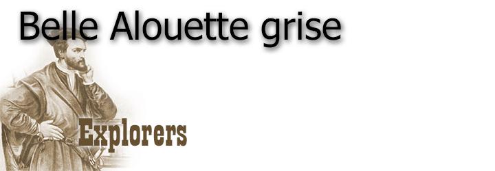 BELLE ALOUETTE GRISE